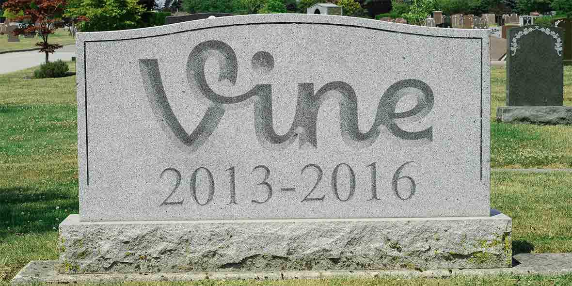 Gasp blog rip vine